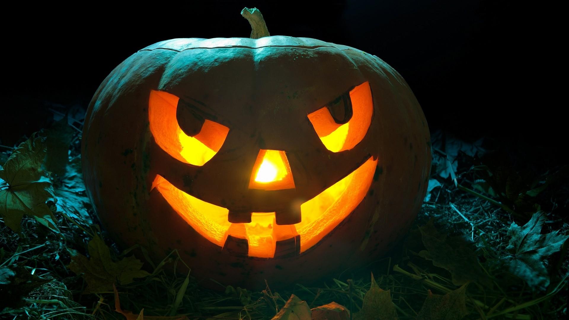 Halloween-Pumpkin-2560×1600-dusicky-obrazky-na-plochu-dyna