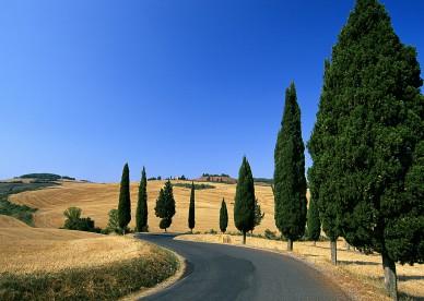 Italy-03