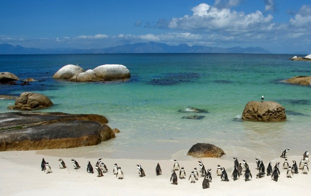 South-Africa-05