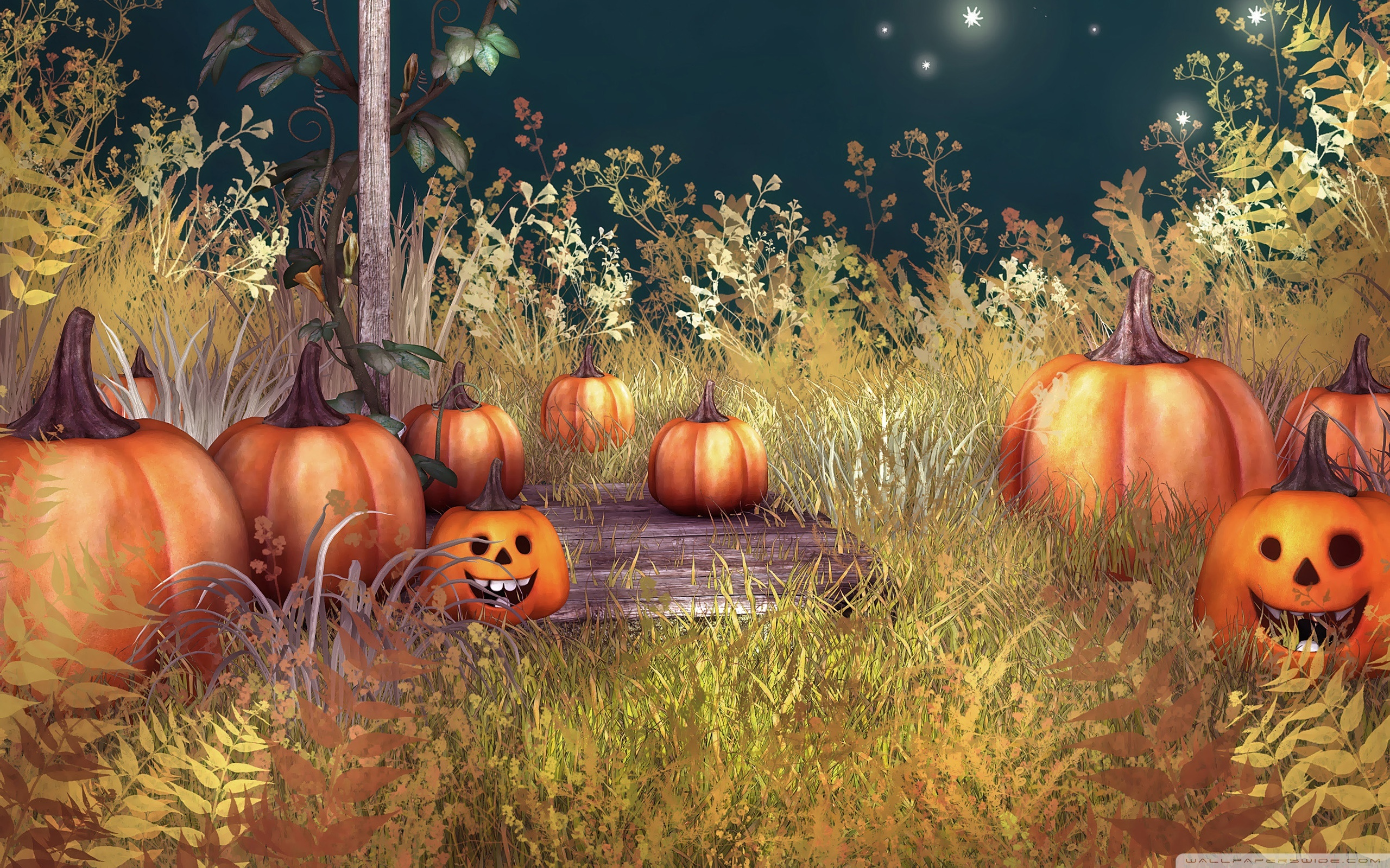 halloween_pumpkins-wallpaper-2560x1600-dusicky-obrazky-na-plochu
