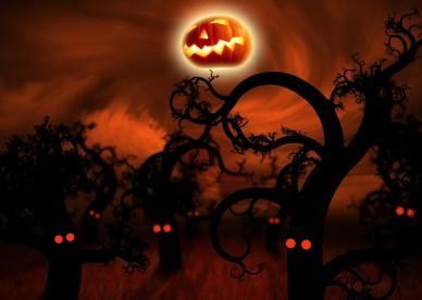 midnight_forest_halloween-2560x1600-dusicky-obrazky-na-plochu-les